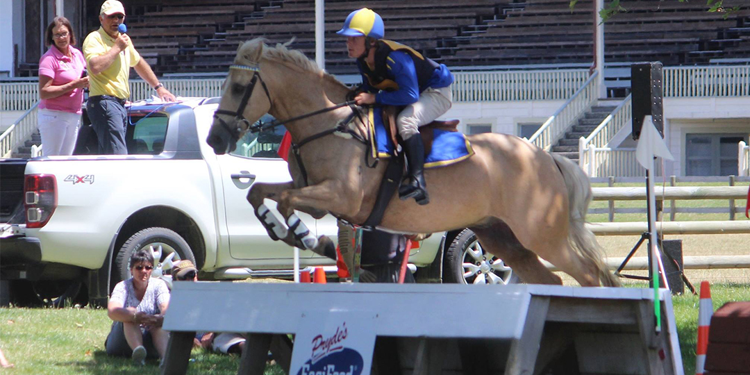 Masterton Showgrounds Equestrian