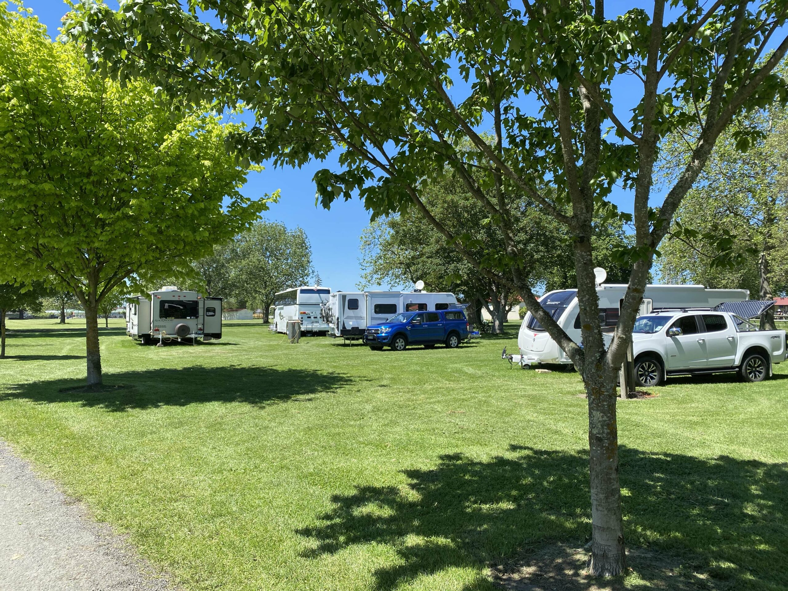 Image of motorhomes in Solway Showgrounds